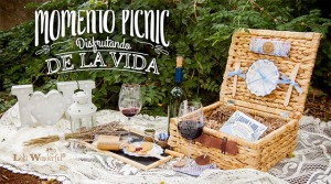 momento-picnic_copas-vino